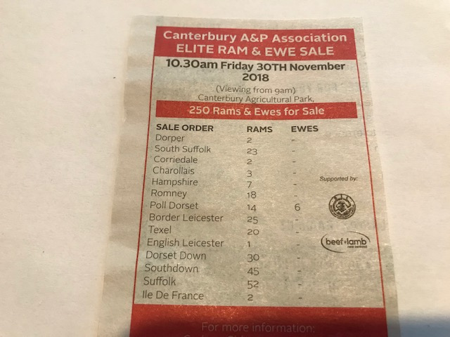 Elite Ram & Ewe Sale Canterbury 2018 Advert