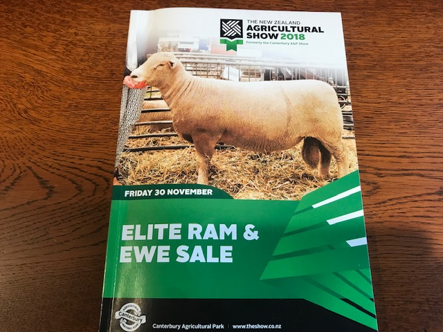 Elite Ram & Ewe Sale Canterbury 2018 CatalogueP