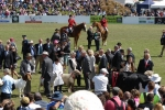 canty-a-p-show-2012-096