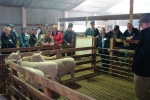 """Judging Discussion at \""""Fernhill\"""""""