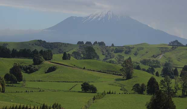 Mangaotea Farm looking to Mt Egmont