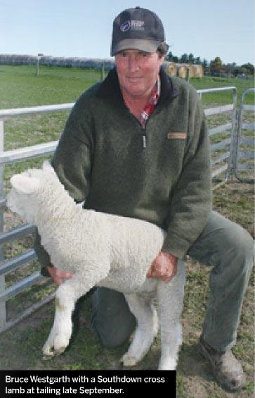 Bruce Westgarth