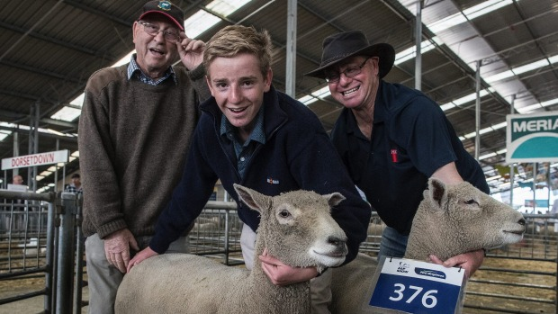 The southdown farming trio of Leo Christey, left, Mark Christey, 16, and Andrew Christey.