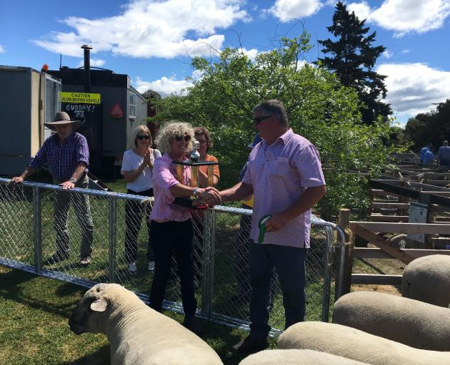 Phil Williams, of Amberley, congratulates Christina Jordan, of Blenheim, on winning the all breeds commercial ram hogget competition, presenting a trophy donated by Mr Williams' parents.
